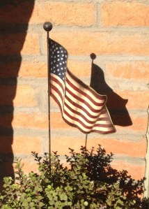 flag, terrorists, response to terror, more united than ever