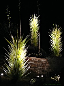 Desert Botanical Garden Chihuly Glass Yucca Sculptures (c) Kebba Buckley Button