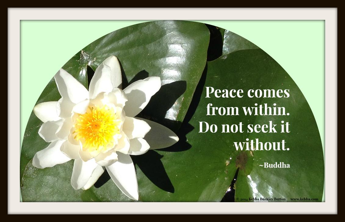 2014 Peace comes-Buddha-2573